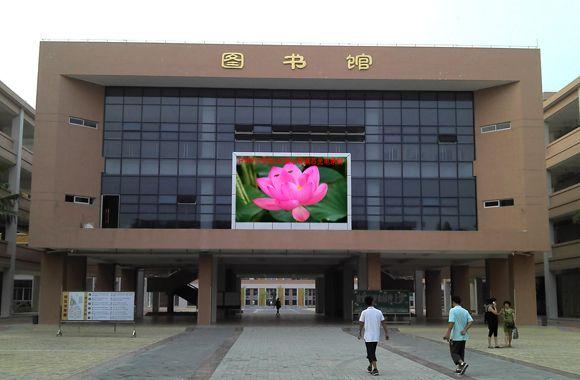 新塘甘泉小学案例2